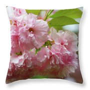 Spring Pink, Green And White Throw Pillow