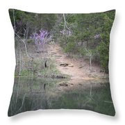 Spring Pond Throw Pillow
