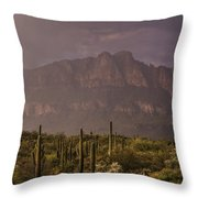 Spring Rain In The Sonoran  Throw Pillow