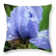 Spring Raindrops Blue Iris Flower Water Baslee Troutman Throw Pillow