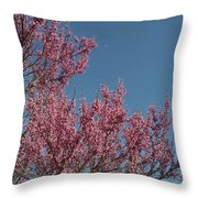 Spring Redbud Tree Throw Pillow