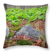 Spring Renewal Throw Pillow