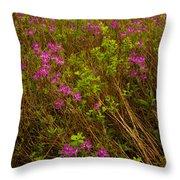 Spring Rhodora Blossoms Throw Pillow