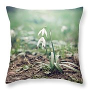 Spring Rising Throw Pillow by Heather Applegate
