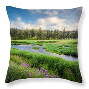 Spring River Valley Throw Pillow