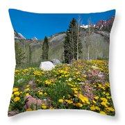 Spring Rocky Mountain Landscape Throw Pillow