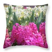 Spring Round Up Throw Pillow
