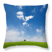 Spring Scape Throw Pillow