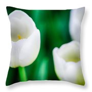Spring Series #14 Throw Pillow
