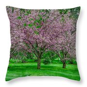 Spring Series #20 Throw Pillow