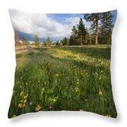 Spring Shadows Throw Pillow by Mike  Dawson