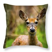 Spring Shed Throw Pillow