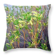 Spring Shoreline Throw Pillow