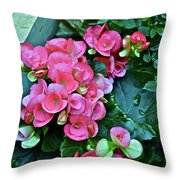 Spring Show 17 Begonias And Roses Throw Pillow