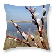 Spring Sign Throw Pillow