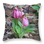 Spring Slippers Throw Pillow