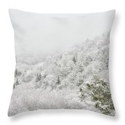 Spring Snow And Fog Highlands Throw Pillow