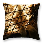 Spring Social Throw Pillow