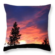 Spring Spectacle Throw Pillow