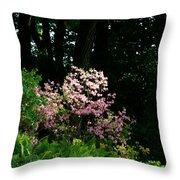 Spring Spotlight Throw Pillow