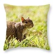 Spring Squirrel Throw Pillow