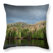 Spring Storm Coming Throw Pillow