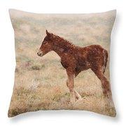 Spring Storm Foal Throw Pillow