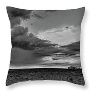 Spring Storm Front In Black And White Throw Pillow