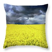 Spring Storm In Australia Throw Pillow