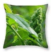 Spring Sumac Throw Pillow