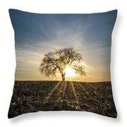 Spring Sun Set Throw Pillow