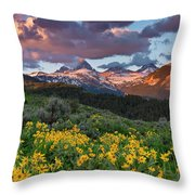 Spring Sunset In The Tetons Throw Pillow