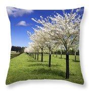 Spring Time #5 Throw Pillow