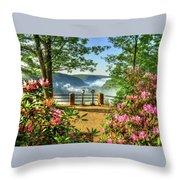 Spring Time At Colton Point State Park Throw Pillow