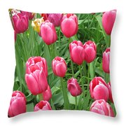 Spring Time Floral Tulips Galore Throw Pillow