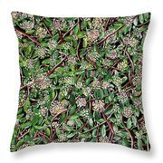 Spring Time In New England Throw Pillow