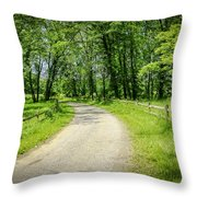 Spring Time In Rural Ohio Throw Pillow
