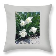 Spring Time Trumpets  Throw Pillow