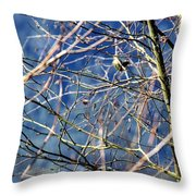 Spring To Life Throw Pillow