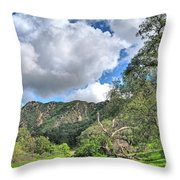 Spring Trail In The Canyon Throw Pillow