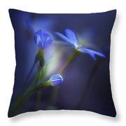 Spring Transitions Throw Pillow