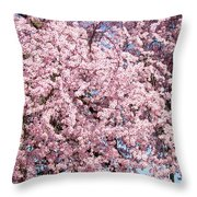 Spring Trees Art Prints Pink Springtime Blossoms Baslee Troutman Throw Pillow