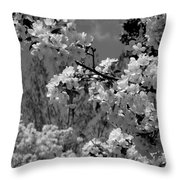 Spring Trees - B And W Throw Pillow