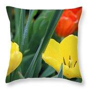 Spring Tulips 144 Throw Pillow