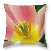 Spring Tulips 154 Throw Pillow