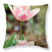 Spring Tulips 160 Throw Pillow