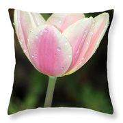 Spring Tulips 161 Throw Pillow