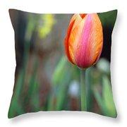 Spring Tulips 179 Throw Pillow