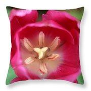 Spring Tulips 200 Throw Pillow