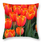 Spring Tulips 207 Throw Pillow